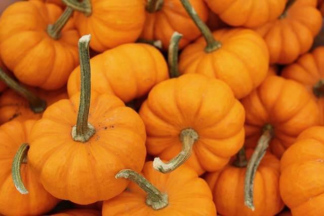 Pumpkin Spaetzle